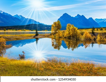 Golden Autumn in the Canadian Rockies. Glowing blue and gold colors. In the blue smooth water of the famous artificial Abraham lake reflects the golden foliage of aspen and birches.