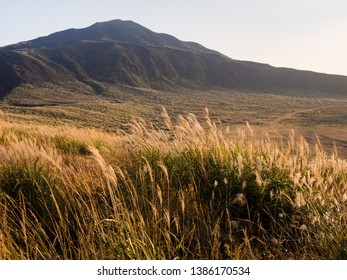 Golden autumn grass at Kusasenri Plateau inside Aso volcanic caldera - Aso-Kuju National Park, Kumamoto prefecture