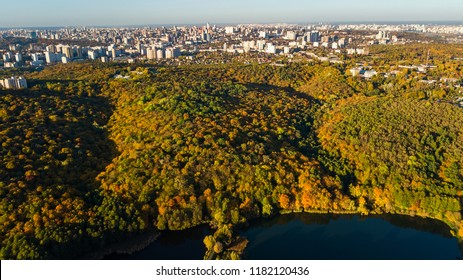 Golden autumn Kyiv cityscape, aerial drone view of city skyline and forest with yellow trees and beautiful landscape from above, Kiev, Goloseevo forest, Ukraine