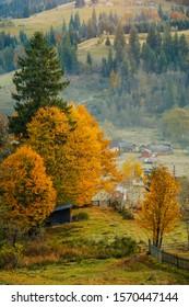 Golden autumn landscape in Carpathian mountain, Ukraine, Verkhovyna, Zelene village