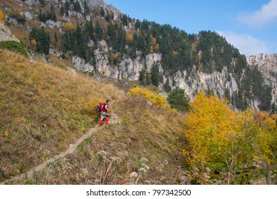 Golden autumn in the mountains of Adygea