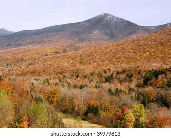 Golden Autumn in New England