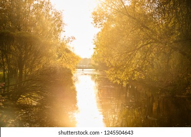 Golden autumn in park, embankment of river, sunny day, clear weather, reflections, leafs on the ground, shadows of trees, yellow color
