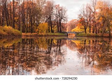 Golden autumn in the Park of Saint-Petersburg