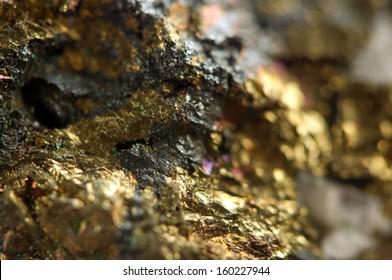 Golden background. Macro