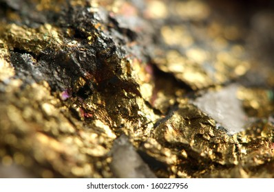 Golden background. Macro