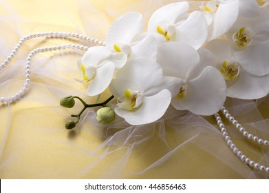 golden background and orchid