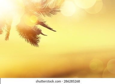 Golden beach tropical banner background. Coconut palm tree, sunlight and sunset over the sea. Bokeh effect.