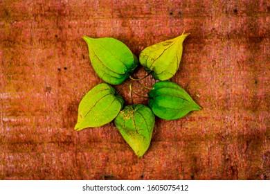 The golden berry's flower raw