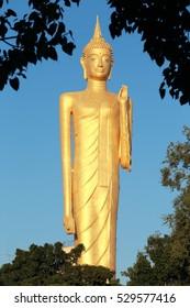 Golden big buddha statue with blue sky