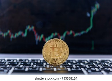 Golden bitcoin coin against digital currency chart background