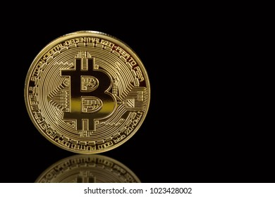 Golden bitcoin isolated on black background with reflection. Cryptocurrency mining concept. Free space for your text