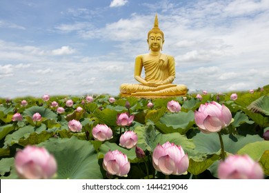 Golden Buddha images on sky clouds background in a Buddhist temple with lotus garden,concept for vesak day
