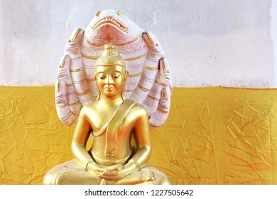 Golden Buddha with a snake Statue set against a yellow and white color block background at the Wat Thummikarat, Thailand