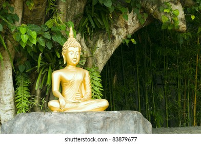 Golden Buddha statue under green tree in meditative posture