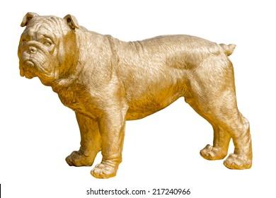 Golden bulldog statue on white background