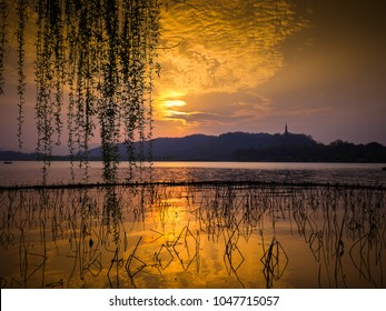 Golden clouds over lake with mountain in distance. Silhouette of dead lotus stems and willow tree branches against sunset. West Lake, City of Hangzhou, China.
