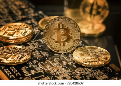 The golden coin of bitcoin lies on the video card for mining
