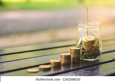 golden coins stack on wood table and coin in glass jar green leaves growth on with blur nature bokeh background in park. financial banking saving concept. ESG Environmental Social Governance. startup.