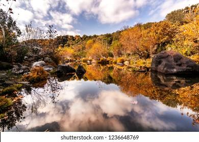 golden colored valley,Manisa,Turkey