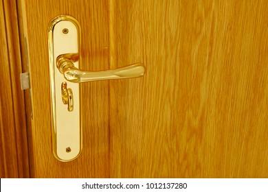 Golden door knob detail on an oak wooden door. Horizontal
