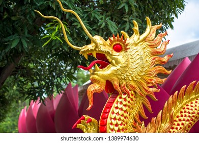 Golden dragon in oriental style