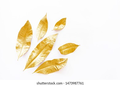 Golden dry leaves isolated on white background. Flat lay, top view minimal concept. Copy space. Autumn fall vibes. Christmas decor design element. Botany herbarium
