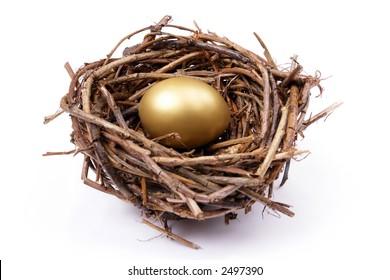 Golden egg in bird's nest over white background