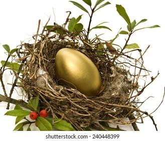 Golden Egg In Bird's Nest/ Retirement Nest Egg