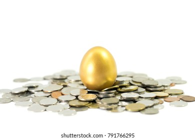 Golden egg with coins on white background.