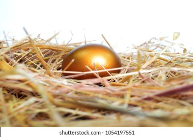 Golden egg on a bed of straw.