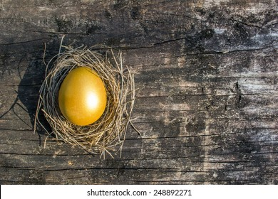 Golden egg opportunity with retirement planning concept
