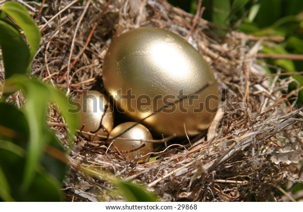 golden eggs in a bird nest in a green tree representing finincial freedom and security in the image of a Nest Egg