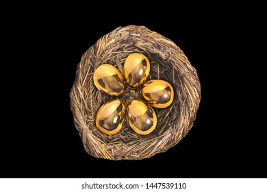 Golden eggs in bird nest isolated on black background