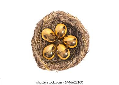 Golden eggs in bird nest on white