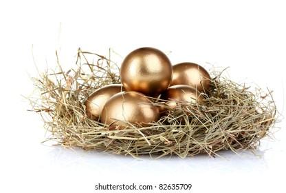 golden eggs in nest isolated on white