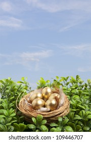 Golden eggs in nest on blue sky
