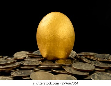 Golden eggs on black background. investment concept,business concept.