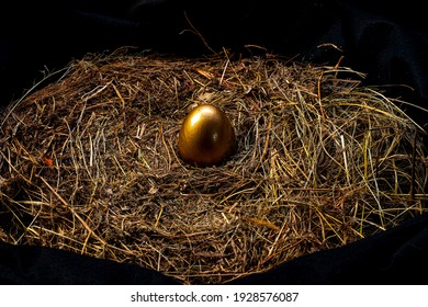 Golden eggs and white eggs in a bird's nest, seen from above..
