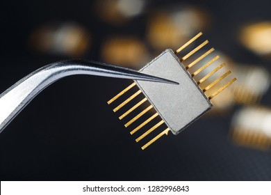 Golden electronic chip with tweezers on the dark background.