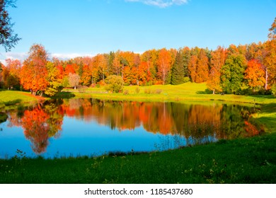 Golden fall (mellow autumn) in Pavlovsky park, Pavlovsk, Saint Petersburg, Russia