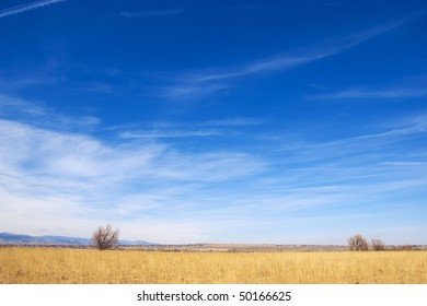 Golden field and blue sky give a feeling of vast space on the lovely Colorado prairie with view of tiny homes and blue mountains in the distance