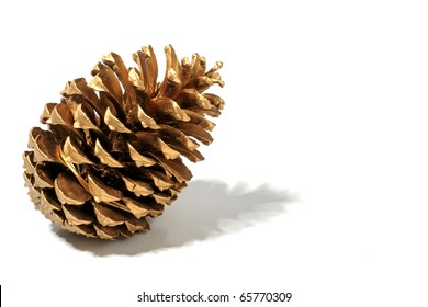 Golden fir apple on a white background