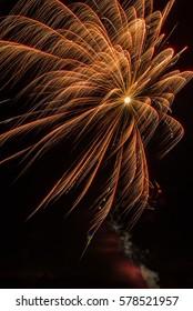 Golden firework explosion