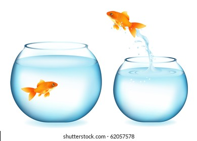 Golden Fish Jumping To Other Goldfish, Isolated On White
