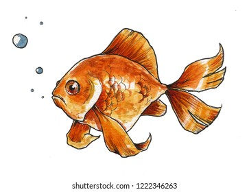 golden fish on white background, painted with watercolor and ink