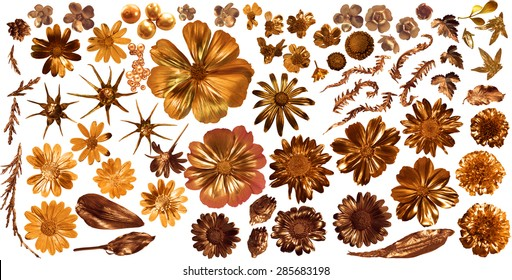 golden flora collection of 68 gilded, real flower parts, studio photographed with partially liquid gold , isolated on white, comes with clipping paths