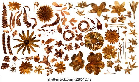 golden flora collection of 85 gilded, real flower parts, studio photographed with partially liquid gold , isolated on white, comes with clipping paths