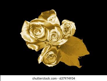Golden Rose Flower Images Stock Photos Vectors