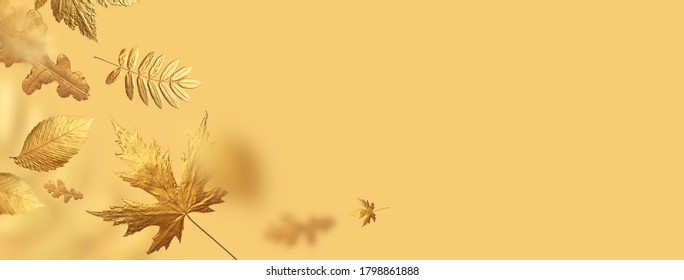 Golden flying autumn leaves of different shapes on beige yellow background. Autumn concept, fall background. Minimal floral design, autumn leaf frame. Golden twig. Autumn creative composition. Banner